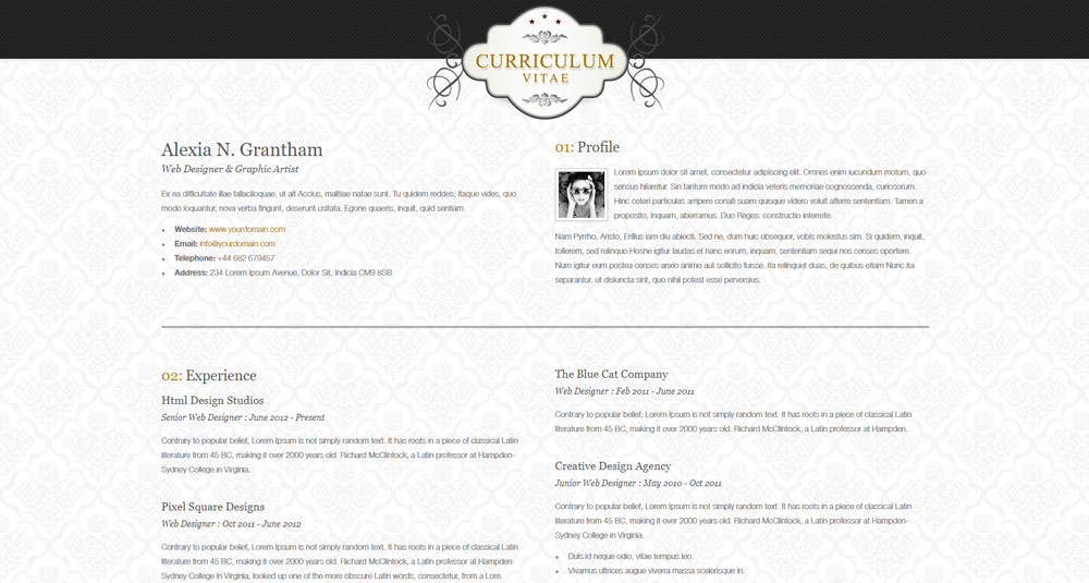 plantilla-html-gratis-retro-elegance