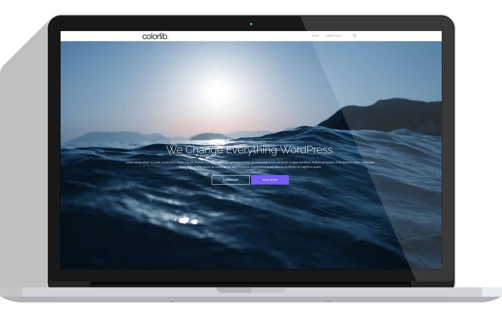 plantilla-gratis-wordpress-shapely