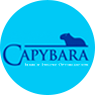 capybaraseo logo antiguo