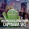 capybara seo henry google partner