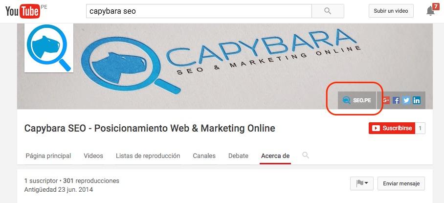 capybara seo en youtube