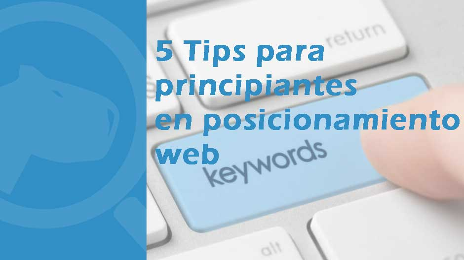 keywords posicionamiento web seo