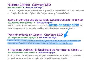 meta descripcion capybara seo