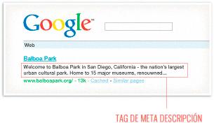 tag-meta-descripcion