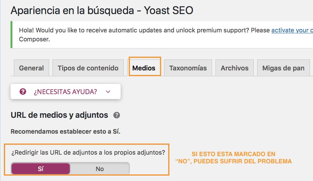 problema yoast seo medios rankings google